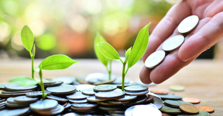 lições de investimento