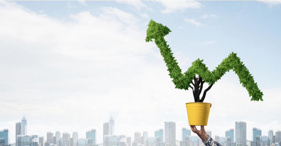 rentabilidade nos investimentos