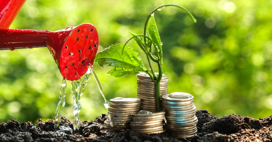 investimento sustentável